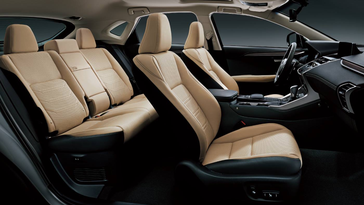 Xe Lexus NX300 2020